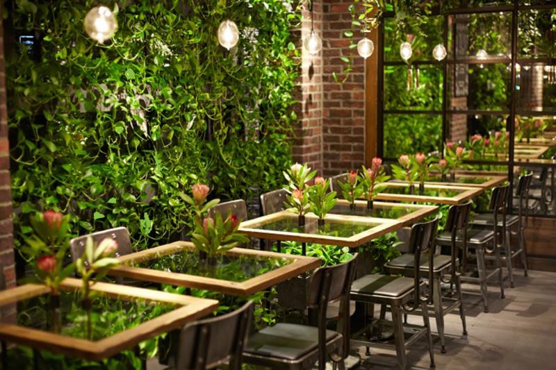 thiết kế quán cafe sân vườn hoàn hảo